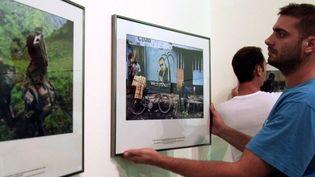 Accrochage des photos de Phil Moere àVisa pour l'image de Perpignan  (RAYMOND ROIG / AFP)