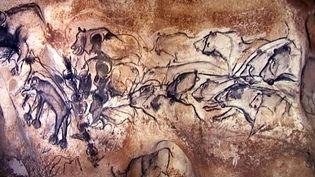 Fresque de la Grotte Chauvet représentant une scène de chasse  (France 3 / Culturebox)