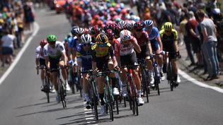 Des coureurs du tour de France lors de la première étape en Belgique, le 6 juillet 2019. (MARCO BERTORELLO / AFP)