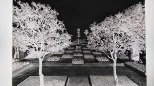 """Thérèse Bonney, """"Jardin conçu par Gabriel Guevrekian à la Villa Noailles"""", 1928, Négatif sur plaque de verre, Don EditionsMassin, 1973-1974 (THE REGENTS OF THE UNIVERSITY OF CALIFORNIA / MAD PARIS / CHRISTOPHE DELLIERE)"""