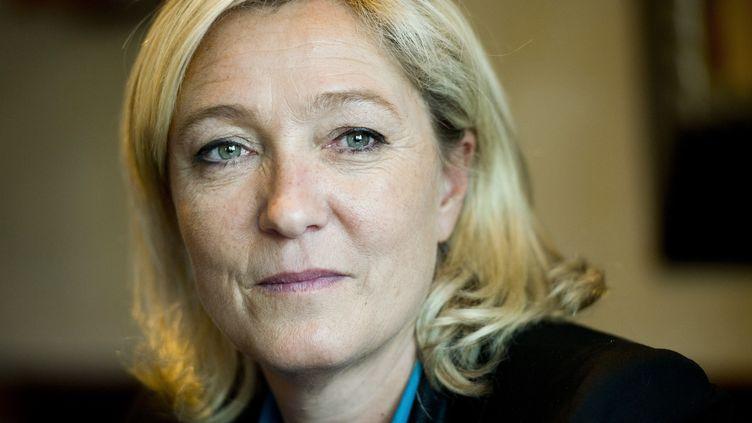 Marine Le Pen, le 26 juin 2013 à Paris. (LCHAM / SIPA)