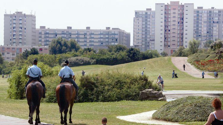 Le parc de La Courneuve couvrent 400hectares au coeur de la Seine-Saint-Denis. (JACK GUEZ / AFP)