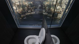 Des toilettes surplombant le distrcit financier de Londres (Royaume-Uni).  (LUKE MACGREGOR / REUTERS)