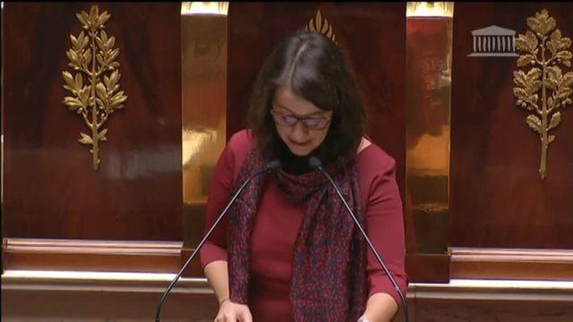 """Cécile Duflot : """"Ni l'état d'urgence ni la déchéance de nationalité ne requièrent de révision constitutionnelle"""""""