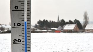 Une photo d'un thermomètre prise àGodewaersvelde (Nord), le 2 décembre 2010. (PHILIPPE HUGUEN / AFP)