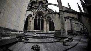 Des pierres tombées de la cathédrale Notre-Dame de Paris sur le toit du bâtiment, le 28 juin 2017. (MARTIN BUREAU / AFP)