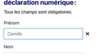 """Pour ce second confinement, Le prénom """"Jean"""" est remplacé par """"Camille"""" dans la fenêtre prénom sur l'attestation de déplacement. (CAPTURE D'ECRAN ATTESTATION DE DEPLACEMENT)"""