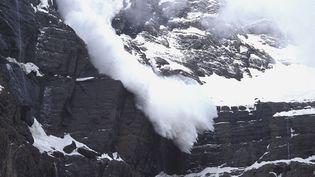 Une avalanche dans le département des Hautes-Pyrénées, en 2009. (DANIELE SCHNEIDER / AFP)