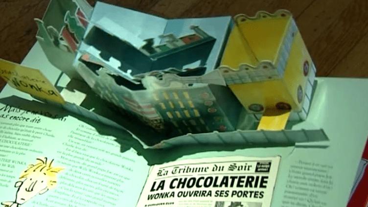 Livre Pop up au musée de l'imprimerie de Lyon  (France 3 - Culturebox)
