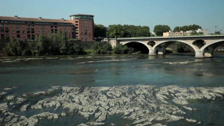 Climat : la sécheresse arrive plus tôt que d'habitude (France 2)