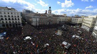 Des milliers de manifestants regroupés derrière les couleurs de Podemos, le parti anti-austérité espagnol, le 31 janvier 2015 à Madrid (Espagne). (GERARD JULIEN / AFP)