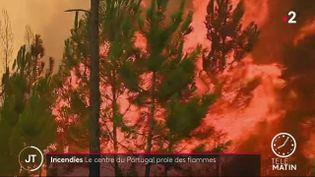 Le centre du Portugal victime d'un gigantesque incendie (FRANCE 2)