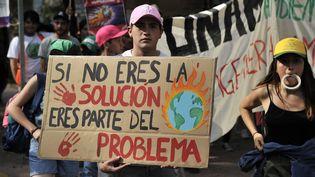 Un manifestant lors d'une marche pour le climat, en novembre 2019 à Mexico, au Mexique. (CLAUDIO CRUZ / AFP)
