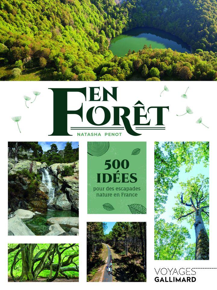 En forêtde Natasha Penot, 500 idées pour des escapades nature en France, ce livre est classé par région avec, pour chacune d'elle, une sélection de forêts françaises remarquables.  (GALLIMARD VOYAGES)