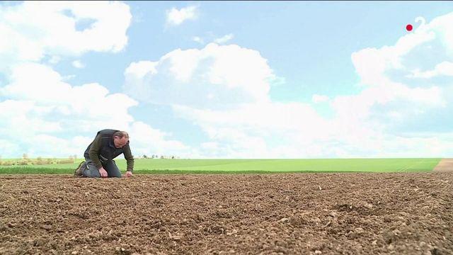 Gel : un fond de solidarité exceptionnel pour les agriculteurs