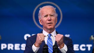 Etats-Unis : Washington en alerte maximale avant l'investiture de Joe Biden (JIM WATSON / AFP)