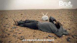 Pour traverser le Niger, les migrants de l'Afrique de l'Ouest risquent leur vie (BRUT)