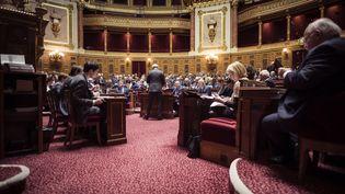 A l'intérieur de l'hémicycle du Palais du Luxembourg (Paris), où siège le Sénat, le 17 novembre 2016. (LIONEL BONAVENTURE / AFP)
