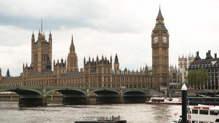 Westminster,au bord de la Tamise, à Londres (Grande-Bretagne). (THOMAS PADILLA / MAXPPP)