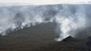 Les incendies qui ravagent la forêt de la région de Santa Cruz, dans l'est de la Bolivie. (AIZAR RALDES / AFP)