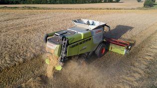 Une moissoneuse batteuse en pleine moisson de blé à Saint Fulgent (Vendée). Photo d'illustration. (FRANCK DUBRAY / MAXPPP)