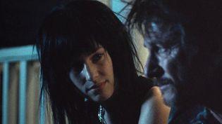 Le nouveaufilmde Sean Penn,Flag Day,sort le 29 septembre dans les salles de cinéma. Dans ce biopic d'un braqueur, l'acteur et réalisateur partage l'affiche avec sa fille. (FRANCE 2)