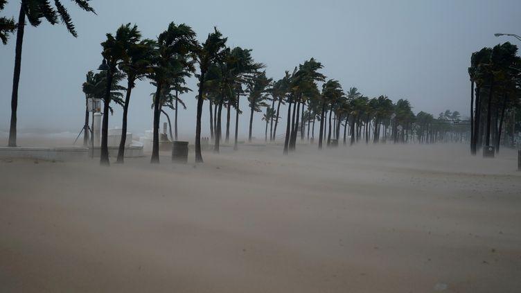Le sable recouvre un boulevard de Fort Lauderdale en Floride (Etats-Unis), après le passage de l'ouragan Irma, le 10 septembre 2017. (CARLO ALLEGRI / REUTERS)
