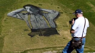 L'artiste français a miscinq jours pour réaliser cette fresque géante sur le flanc d'une colline de Leysin (Suisse). (ALAIN GROSCLAUDE / AFP)