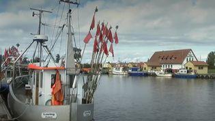 Les quotas de pêche vont être fortement réduits en Baltique, la mer qui se réchauffe le plus au monde. L'Union européenne vient de prendre des mesures très strictes pour protéger cette ressource. (CAPTURE ECRAN FRANCE 2)