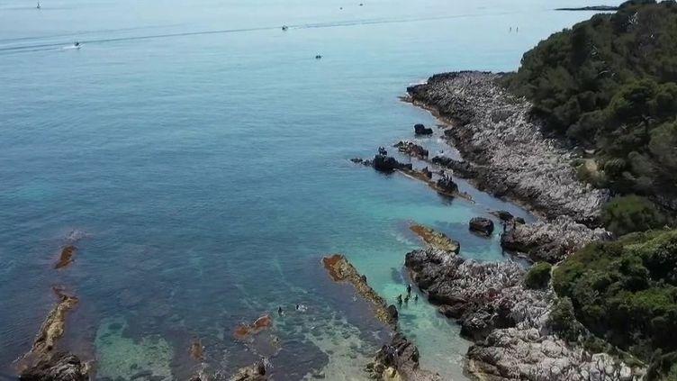 Une équipe de journalistes de France 2 vous emmène sur un sentier du littoral qui rouvre après deux mois de fermeture administrative. Direction le cap d'Antibes (Alpes-Maritimes). (FRANCE 2)