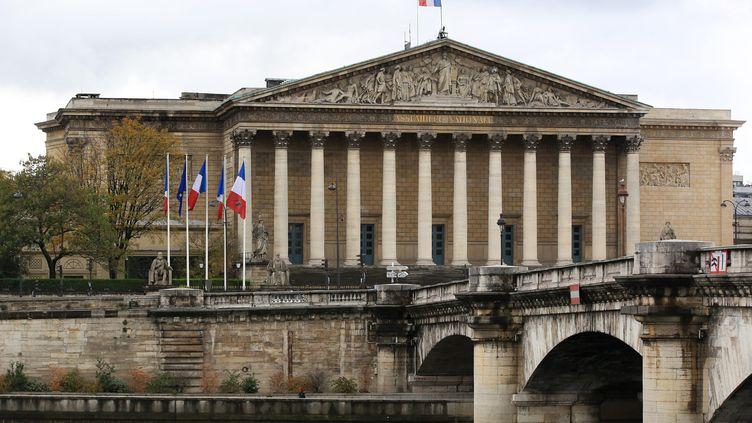 """Le projet de loi """"climat et résilience"""" sera examiné à l'Assemblée nationale à partir du 29 mars. Photo d'illustration. (VINCENT ISORE / MAXPPP)"""