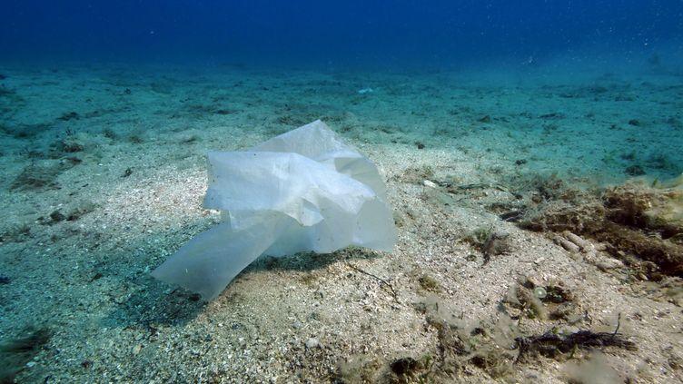 Illustration de la pollution au plastiqueen mer Méditerranée. (FLORIAN LAUNETTE / MAXPPP)