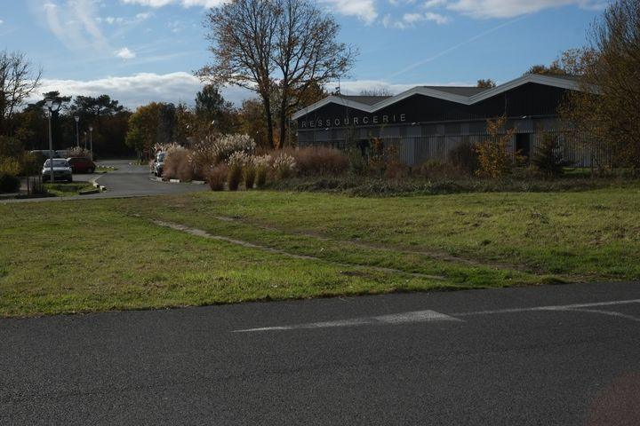 Le terrain sur lequel McDonald's espère s'implanter, à Dolus d'Oléron (Charente-Maritime). (MARGAUX DUGUET / FRANCEINFO)