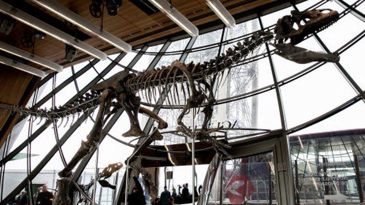 Une nouvelle espèce de dinosaure, exposée au premier étage de la Tour Eiffel  (ROMUALD MEIGNEUX/SIPA/1806021544)