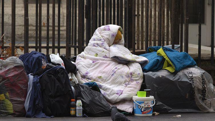 Une femme sans domicile fixe recouverte par des couvertures dans une rue de Paris, le 3 décembre 2014. (JOEL SAGET / AFP)