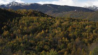 Des montagnes dans l'Ariège, en 2014. (FABIEN BOUTET / PHOTONONSTOP / AFP)