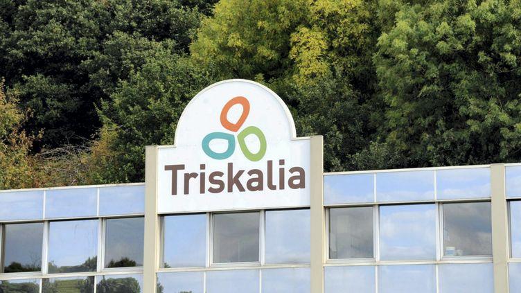 Triskalia cible d'une plainte pour avoir livré des aliments pour bovins contaminés. (DAVID ADEMAS / MAXPPP)