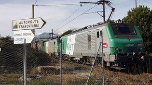 Un train de fret, le 19 janvier 2012. (RAYMOND ROIG / AFP)