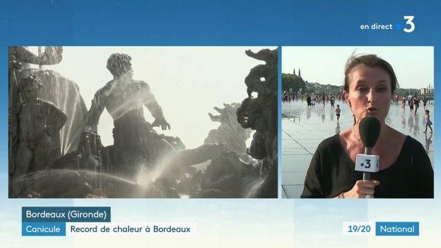 Canicule : 42,6 degrés, record de chaleur battu à Bordeaux