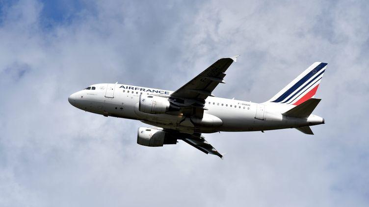 Un avion Air France, le 8 août 2018. (MAXPPP)