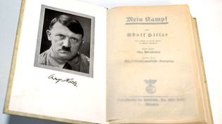 """Une copie de la première édition de """"Mein Kampf"""" d'Hitler. (MARCUS FUHRER / DPA / AFP)"""