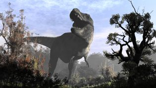Une représentation du Tyrannosaurus Rex. (RAUL LUNIA / AFP)