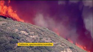 En Californie (Etats-Unis), 500 maisons ont été évacuées à cause d'un important incendie, mercredi 12 août. (FRANCEINFO)
