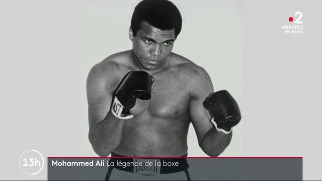 Mohamed Ali : l'histoire d'un boxeur légendaire