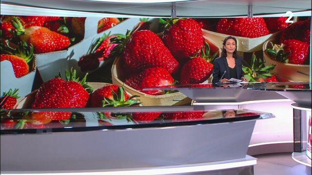 Agriculture : la fraise française, plus chère, mais plébiscitée
