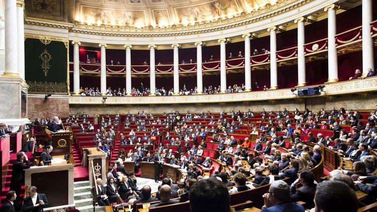 L'hémicycle de l'Assemblée nationale, le 14 mars 2018. (MAXPPP)