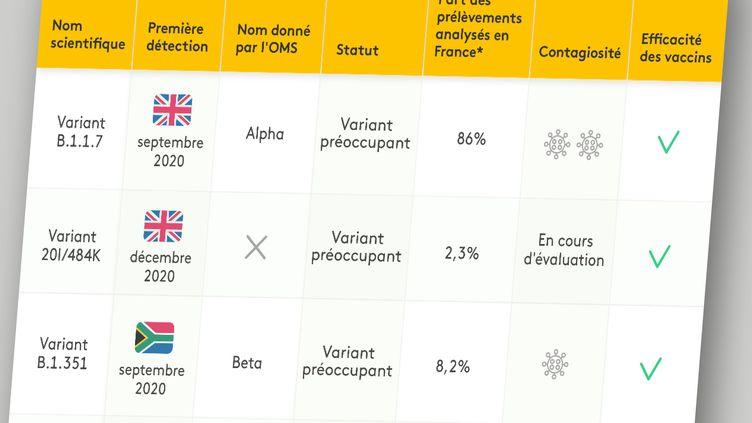 Connaissances sur lesprincipaux variants du Sars-CoV-2 au 11 juin 2021. (JESSICA KOMGUEN / FRANCEINFO)