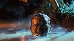 Martin Sheen dans Apocalypse Now (1979) (STUDIOCANAL GMBH)