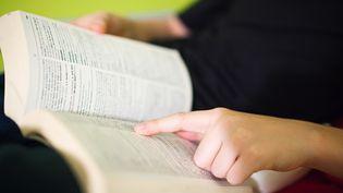"""Les éditeurs de dictionnaires se penchent sur la définition du mot """"mariage"""", alors que le Sénat examine le projet de loi sur le mariage pour tous en avril 2013. (CHARLES GULLUNG CM / IMAGE SOURCE / AFP)"""