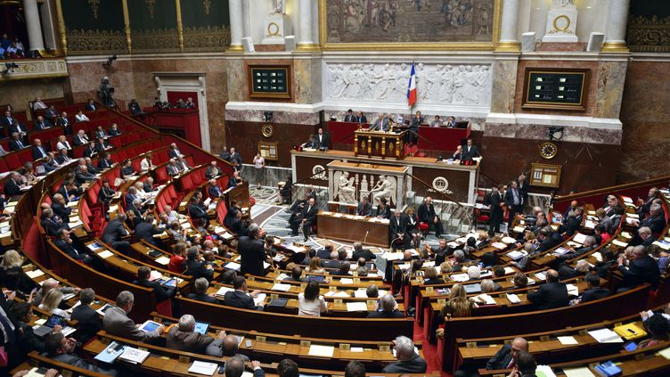 L'hémicycle de l'Assemblée nationale, à Paris, le 11 septembre 2013. (ERIC FEFERBERG / AFP)